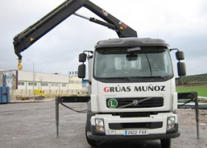 Transporte de madera en camión - Grúas Muñoz